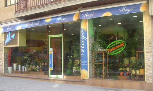 Floristería en Madrid, Calle General Díaz Porlier, 16. Madrid